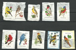 Amerika. 10 Verschillende Vogels - Timbres
