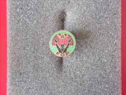 """Insigne """"Insigne De Boutonnière"""" -  Badges P.V. - - Altre Collezioni"""