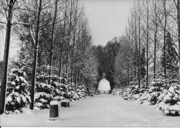 (D14 - 291 - )  Home De La Ste-Famille Ochain-Clavier La Grande Allée Sous La Neige - Clavier
