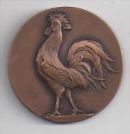 Médaille En Bronze De La Fédération Française De Rugby ( 2 Scans ) - Rugby