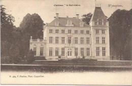 WIJNEGEM:  Château ´le Belvédère´ - Wijnegem
