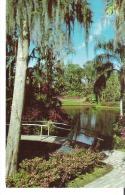 Cypress Gardens, Florida - Etats-Unis