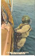 TS  80  Diver Descending For Sponges, Tarpon Springs, Florida - United States