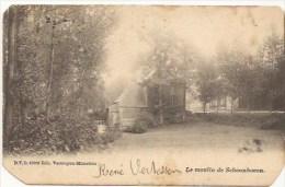 Aarschot:  Le Moulin De Schoonhoven - Aarschot