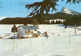 Sciovia Rivetta M. 1402 - Altipiano Vezzena - Trentino - Innevamento Da Novembre Ad Aprile - Italia