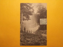 Carte Postale - CAUTERETS (65) - Cascade De Cerisey Vue à Travers La Forêt (1043/1000) - Cauterets