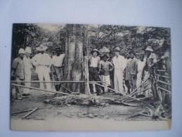 Congo (Kinshasa) Boma // Crocodile (hunting)  / Ca 1900 Ed. C.van Cortenberg Fils Bruxelles/VLEK-STAIN - Belgian Congo - Other