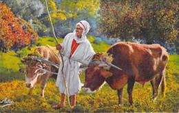 Afrique Algérie Scènes Et Types Laboureur Arabe   (- Editions :A.SIRECKY Oran N°125) * PRIX FIXE - Scènes & Types