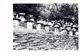 Image Des CEVENNES - APICULTURE RUCHERS TYPIQUES - Ruche - Photo : A. NICOLAS - CPM - Non Classés