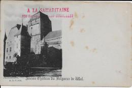 (D14 - 339 - ) Anthisnes - Ancien Château - Anthisnes
