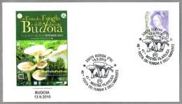 48 FIESTA DEL HONGO - 48 FESTA DEI FUNGHI. Setas - Mushrooms. Budoia, Pordenone, 2015 - Champignons