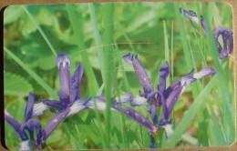 Flowers - 25 Units / Used - Bulgaria