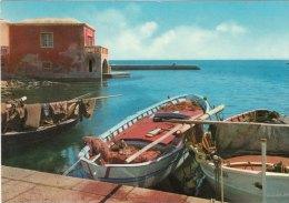 STINTINO (Sassari) -F/G Colore (270310) - Italia