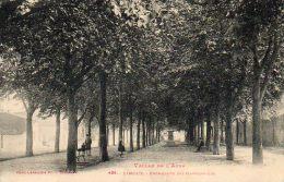 CPA - LIMOUX (11) - Les Rangées D'Arbres De La Promenade Des Marronniers - Limoux