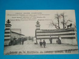 16 ) Segonzac - Entrée De La Distilerie Du Cognac  SAMUEL  BEAU  : Viticulteur En Grande Champagne  - Année   - EDIT : - France