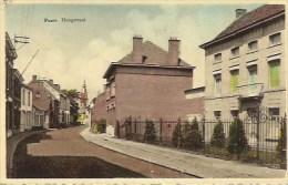 PUURS: Hoogstraat - Puurs