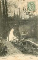 37 TOURS. Jardin Des Plantes 1906 - Tours