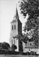 ( D14 - 357 - ) Anthisnes - L'Eglise - Anthisnes