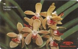 Singapore - Vandaenopsis Twinkle, Orchids, 11SIGB, 1991, 730.000ex, Used - Singapour