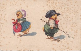 POSTAL DE DOS POLLITOS (GALLO-COQ) - Pájaros