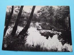 """SCHANS ( Stalken Zutendaal ( K.S.A. """" De Heikleuters """" ) Anno 1977 ( Zie Foto Voor Details ) ! - Zutendaal"""