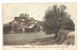 CPA 69 Châtillon'd'Azergues Vue Prise à L'est, Dans Les Prés De La Vallée D'Alix - France