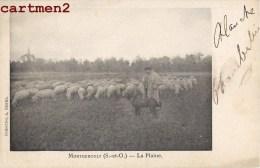 MONTGEROULT LA PLAINE BERGER TROUPEAU DE MOUTONS 95 VAL D'OISE 1900 - Francia