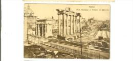 F.III Accossano - Roma - Foro Romano E Tempio Di Saturno - Timbre  Verso - Otros