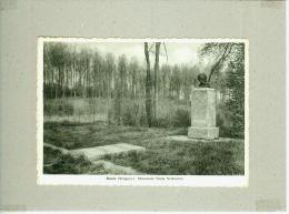 CP.  ROISIN.  MONUMENT  EMILE  VERHAEREN - Honnelles