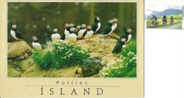 ISLAND  ISLANDA  Puffins   Nice Stamp  Cycling Theme - Islanda