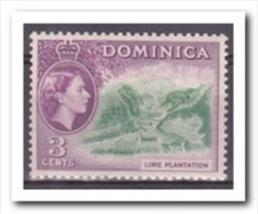 Dominica 1954, Postfris MNH, Lime Plantation, Fruit - Dominica (1978-...)
