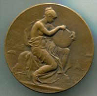 Medaille TOURING CLUB DE FRANCE Dans Sa Boîte D´origine - Professionnels / De Société