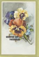 VOSSELAAR: GROETEN UIT , - Vosselaar