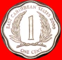 ★SCALLOPED: EAST CARIBBEAN ★ 1 CENT 2000! LOW START ★ NO RESERVE!!! - Caribe Oriental (Estados Del)