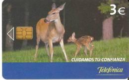 ¡OFERTA! P-580 TARJETA CIERVO Y CRIA DE TIRADA SÓLO 11500 (DEER) - Espagne