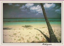 Antigua °° Many Beautiful Palm Fringed Beaches - écrite 1972 - 12x17 ° T-P ° LUXE - Antigua & Barbuda