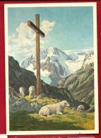 PAA-01  Alpe Grandiose Au Val D'Hérens, Le Pigne D'Arolla, Moutons Au Pied De La Croix. Non Circulé - VS Valais