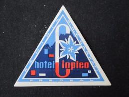 HOTEL CAMPING PENSION MOTEL SPA INN PREDEAL CIOPLEA BUCHAREST ROMANIA LUGGAGE LABEL ETIQUETTE AUFKLEBER DECAL STICKER - Etiketten Van Hotels