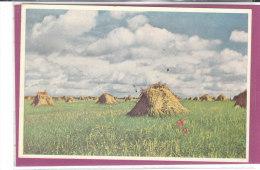 AUVERS-SUR OISE .- La Plaine Au Dela Du Château ( Vincent Van Gogh ) - Paintings
