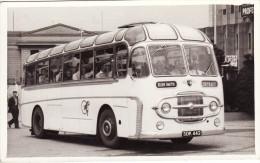 Bus Photo Ellen Smith Rochdale Leyland Worldmaster Plaxton Consort Coach SDK442 - Cars
