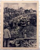 RARE! GERMANY - CIRCA 1962: Postcard Printed In GDR Real Photo - Sachsenhausen Concentration Camp. War 1939 - 1945. - War 1939-45