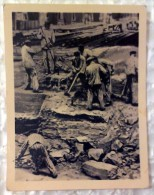 RARE! Real Photo - Sachsenhausen Concentration Camp. Plant Klinkerov.Samaya Terrible Team. DDR 1962 Mini 9*7 - War 1939-45