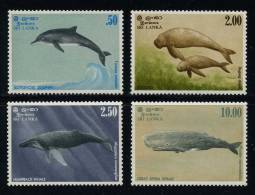 Sri Lanka 1983 Dolphin Whales Dugong Marine Life MNH - Dolphins