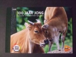 Prestige Boekje Nr 44 100 Jaar Burgers Zoo - Booklets