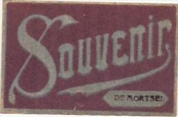 MORTSEL: Souvenir De Mortsel - Mortsel