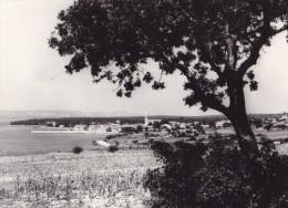 PAKOSTANE (dil99) - Yougoslavie