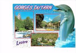 Lozère - Gorges Du Tarn - Canoë Décor Dauphin - Dauphins