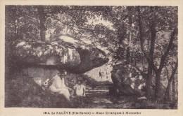 Le Saleve Haute Savoie Blocs Erratiques A Monnesier - Sonstige Gemeinden