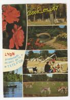 {53467} 69 Rhône Lyon , Promenade Au Parc De La Tête D' Or , Multivues - Lyon