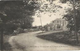 44 SAVENAY      L  ARRIVEE  PAR  LA  ROUTE  DE  ST  ETEINNE - Savenay